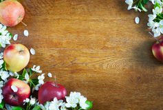 Wooden textured background with apple fruits and flowers Royalty Free Stock Photography