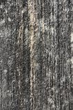 Wooden textured background Royalty Free Stock Photos