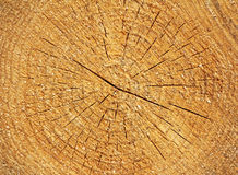 Wooden textured Stock Images