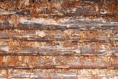 Wooden textured with a tow Royalty Free Stock Photo