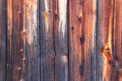 Wooden textures, Wood panel background, Texture of wooden boards. Stock Images