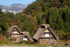 Wooden thatched farmhouses Royalty Free Stock Photos