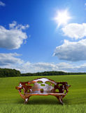 Wooden throne in meadow Stock Photo