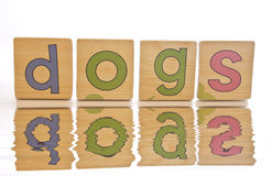 Wooden tiles - spelling DOGS. Wooden tiles with the letters D O G S ( Dogs royalty free stock images