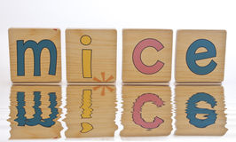 Wooden tiles - spelling MICE. Wooden tiles with the letters M I C E ( Mice stock photo