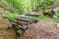 Wooden timber bench, autumn Stock Photos