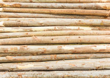 Wooden timber logs Royalty Free Stock Photos