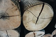 Wooden. Timber wooden pines royalty free stock photography