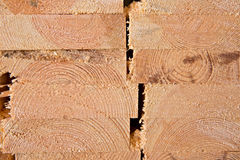 Wooden timber at a sawmill Stock Images