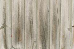 Wooden timber wall texture pattern Royalty Free Stock Images