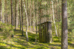 Wooden toilet in the forest Stock Image
