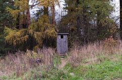 The Wooden Toilet in the Woods Stock Photo