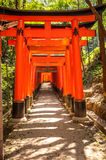 Wooden Torii Gates near Kyoto, Japan Royalty Free Stock Photo