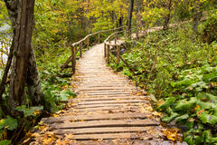 Wooden tourist path in Plitvice lakes national park Stock Photos