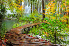 Wooden tourist path in Plitvice lakes national park Royalty Free Stock Photography
