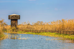 Wooden tower for bird watching Royalty Free Stock Photography