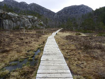 Wooden track in rural landscape Stock Photo