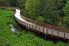 Wooden Trail stock photos