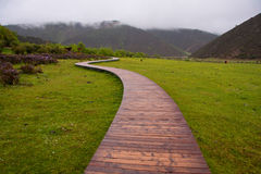 Wooden trail Stock Images