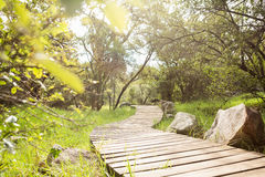 Wooden trail across countryside Stock Photo
