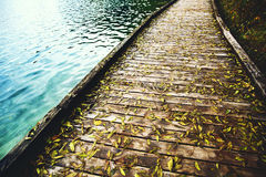 Wooden trail on the Bled Lake, Slovenia. Wooden bridge trail with wet autumn green leaves on the Lake Bled, Slovenia Stock Image