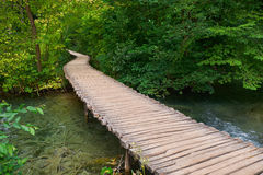 Wooden Trail in Plitvice, Croatia Stock Image