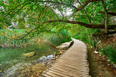 Wooden Trail in Plitvice, Croatia Stock Photos