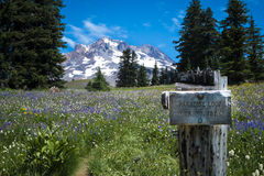 Wooden trail sign, Mt. hood, Oregon Stock Photo