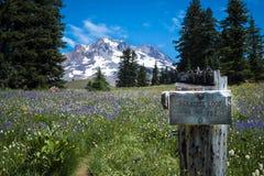 Wooden trail sign, Mt. hood, Oregon Stock Photo