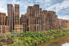 Wooden Transportation Pallets Recycling. Stacks of used Wooden Euro Pallets at a Recycling Depot Royalty Free Stock Photography