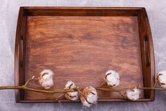 A wooden tray with pussy-willow stock photos