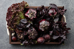 Wooden tray with purple vegetables and herbs. On stone textured background Royalty Free Stock Photography