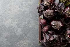 Wooden tray with purple vegetables and herbs. On stone textured background Stock Photography
