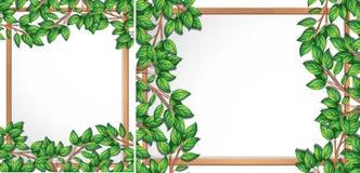 Wooden tree branch frame. Illustration vector illustration