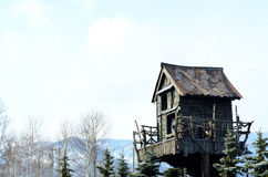 Free Wooden Tree House Royalty Free Stock Image - 72696806