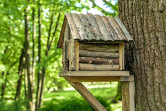Wooden tree house for birds. In the park Royalty Free Stock Photo