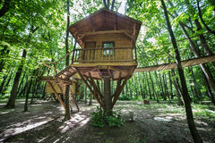 Wooden tree-house in nature park. Wooden treehouse in nature park on a sunny day royalty free stock image
