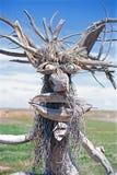 Wooden Tree Man in field royalty free stock photo