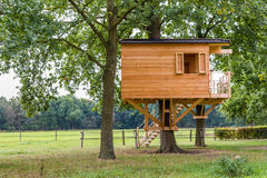 Wooden treehouse Stock Images