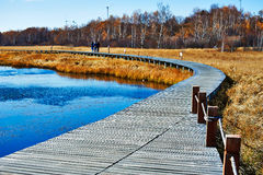 The wooden trestle lakeside Stock Images