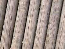 Wooden trunks background Royalty Free Stock Image