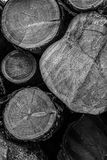 Wooden trunks base gray toned monochrome base design web site natural logs end flat cut stock images