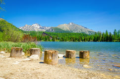 Wooden trunks at beach of mountain lake Royalty Free Stock Photography