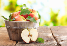 Wooden tub full and a halved fresh apple. Wooden tub full of freshly harvested red apples with a halved apple on display on a wooden tabletop outdoors with Stock Images