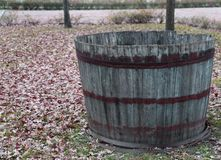 Wooden tub to pick the grapes during the harvest and wine making Royalty Free Stock Photography