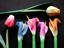 Wooden tulips. Some wooden colored tulips on a black background Royalty Free Stock Photography