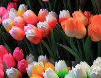 Wooden tulips. Image of colorful wooden tulips on a market stand in Amsterdam Stock Image