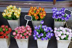 Wooden Tulips Stock Photography