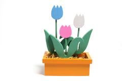 Wooden Tulips in Box. On White Background Stock Image