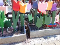 Wooden tulips. In garden boxes on display stock image